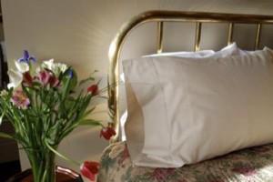 PJ helena montana bed and breakfast